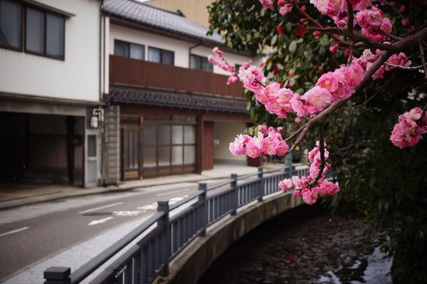 金沢風景092