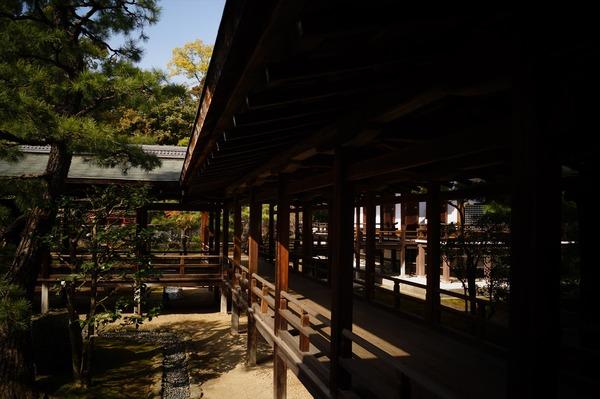 大覚寺022