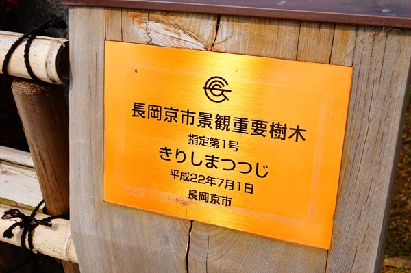 長岡京散策007
