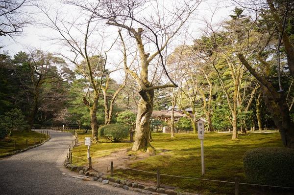 金沢風景028