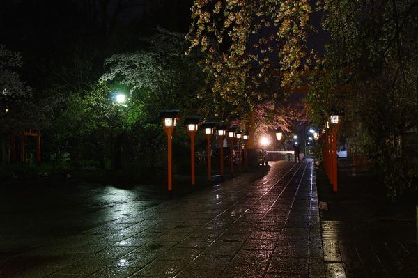 平野神社009