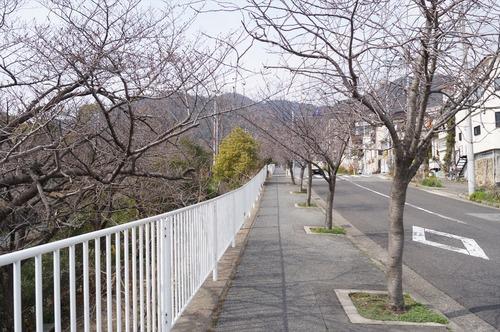 摩耶山002