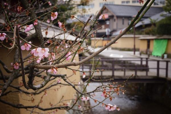 金沢風景082