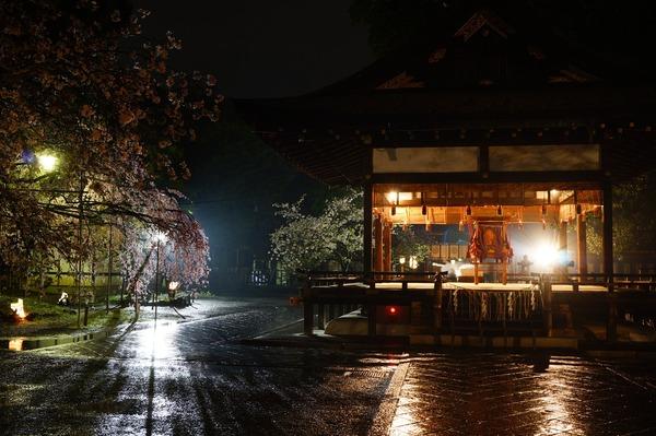平野神社006