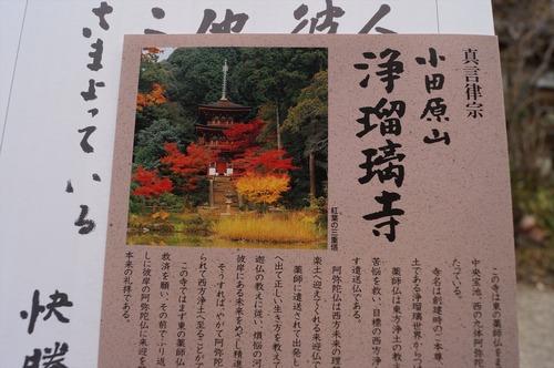 浄瑠璃寺024