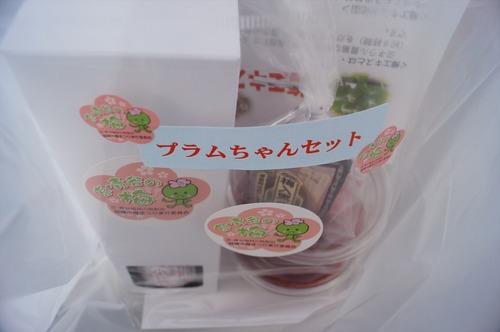 青谷梅林028