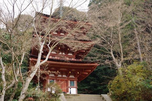 浄瑠璃寺028