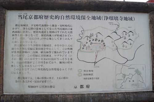 浄瑠璃寺008