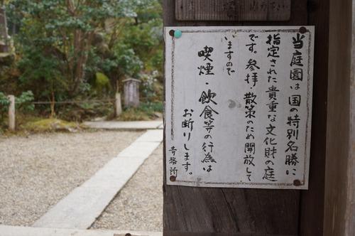 浄瑠璃寺011