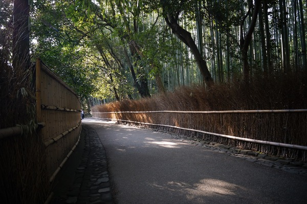 大覚寺062