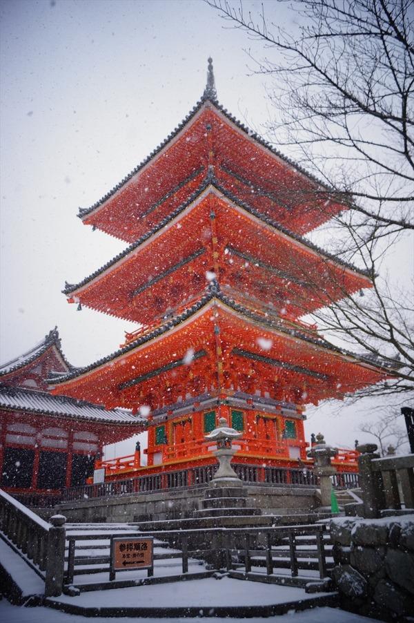 雪の京都016