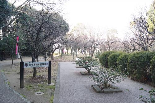 意賀美神社006