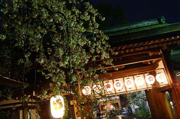 平野神社003