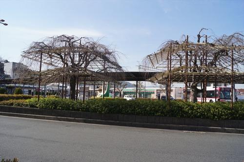 松花堂庭園005