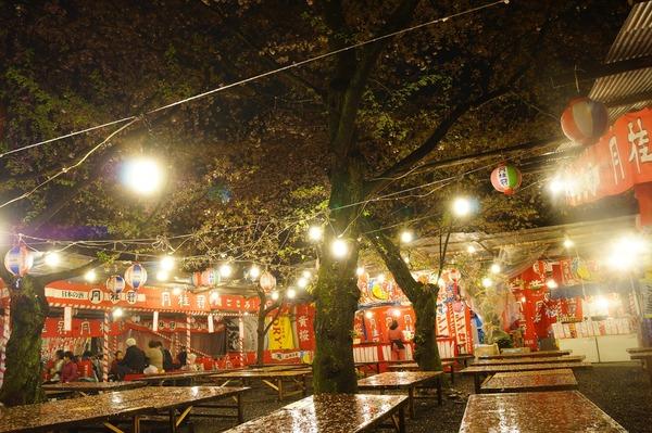 平野神社013