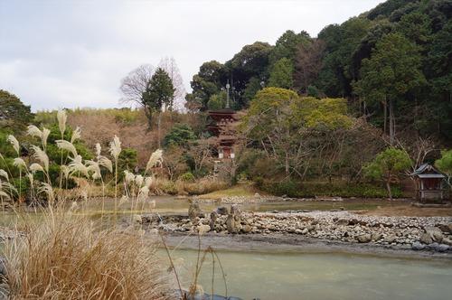 浄瑠璃寺020