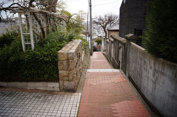 神戸 あるいとう028