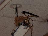 防犯カメラ724−2