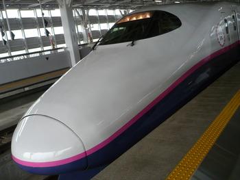 P1110021