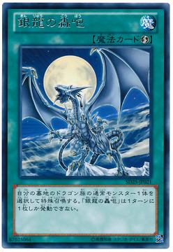 card100013329_1