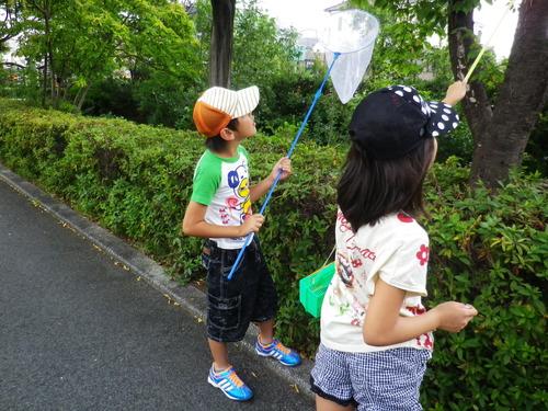 2014_07270062