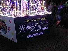 光の祭典2011 1