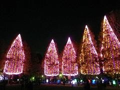 光の祭典2011 6