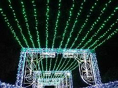 光の祭典2011 8