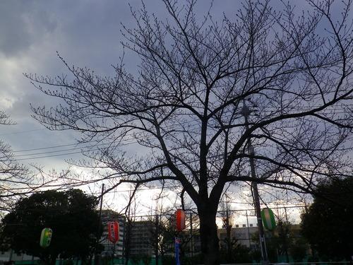 2014_03230013
