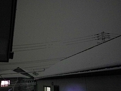 2012_01231月1日 0004