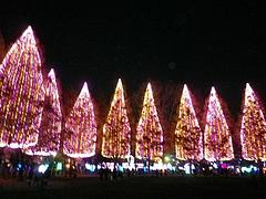 光の祭典2011 5