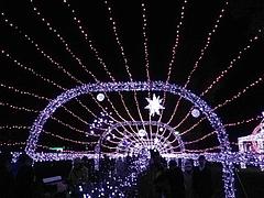 光の祭典2011 9
