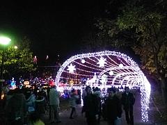光の祭典2011 7