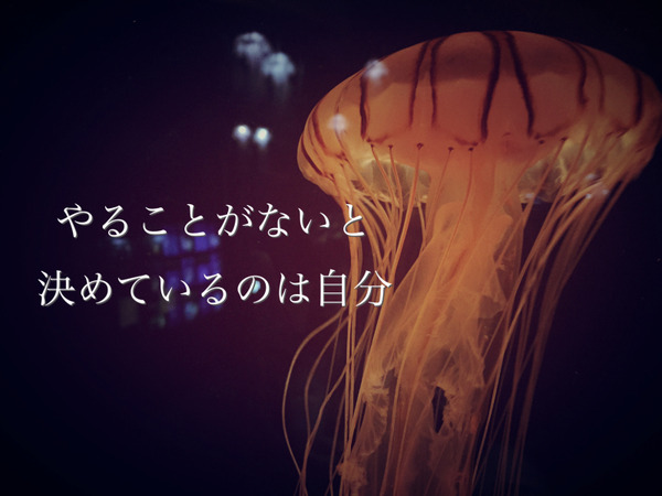 IMG_8681_Fotor