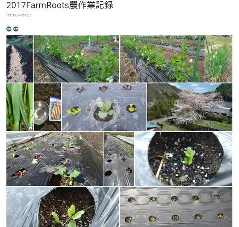 野菜が育つ様子がリアルタイムにわかる共有アルバム開設!~定期便会員限定公開!~