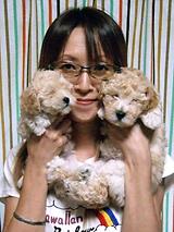 仔犬のお部屋 Lily-coco