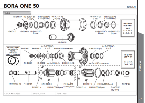 bora50