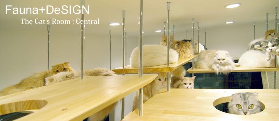 動物の建築士さん イメージ画像