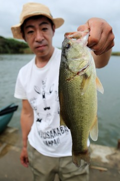 2016-05_sotonasakaura-26