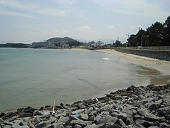 海岸にて1
