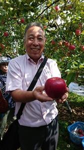 フォーデイズ東京サロン10月りんご狩りバスツアー⑤