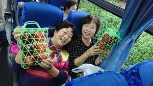 フォーデイズ東京サロン10月りんご狩りバスツアー⑥