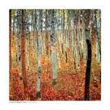 af2-00054_b~Forest-of-Beech-Trees-c-1903-Posters