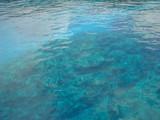 沖縄の海の透明度はバツグン!
