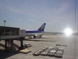 伊丹空港から・・・ANA便☆