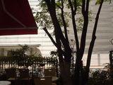 名古屋・栄のど真ん中のカフェ♪