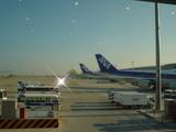 伊丹空港〜羽田へ