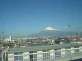 新幹線から見えた♪