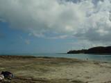 今日は海♪