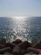 砂辺 太陽